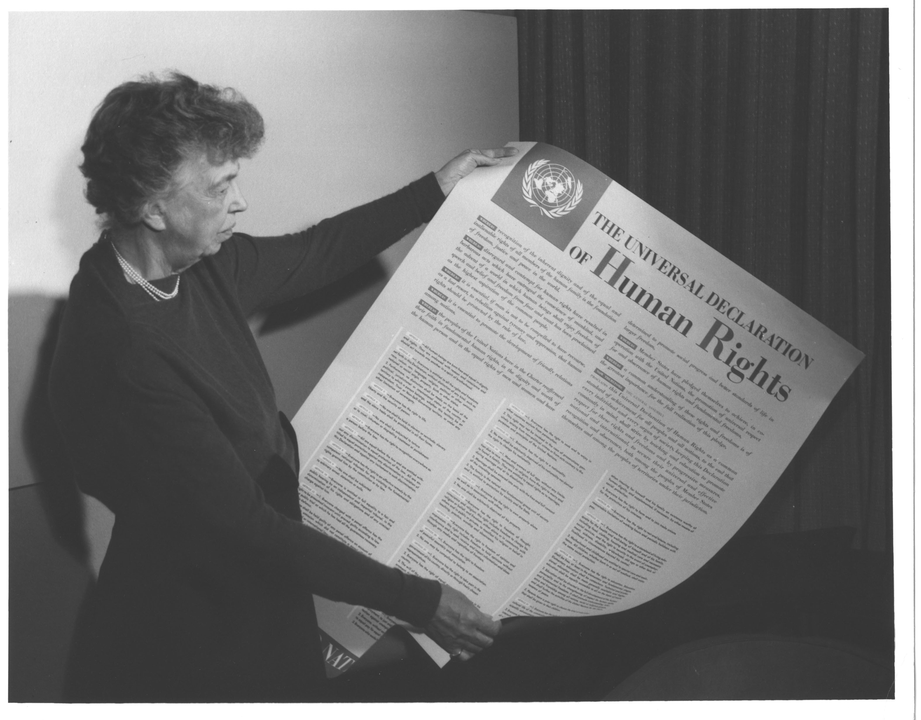 Universal declaration of human rights essay