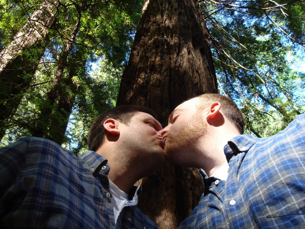 gay-marriage-1571621_1920