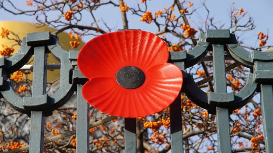 Human Rights Act Reform Among Armistice Day Election Pledges