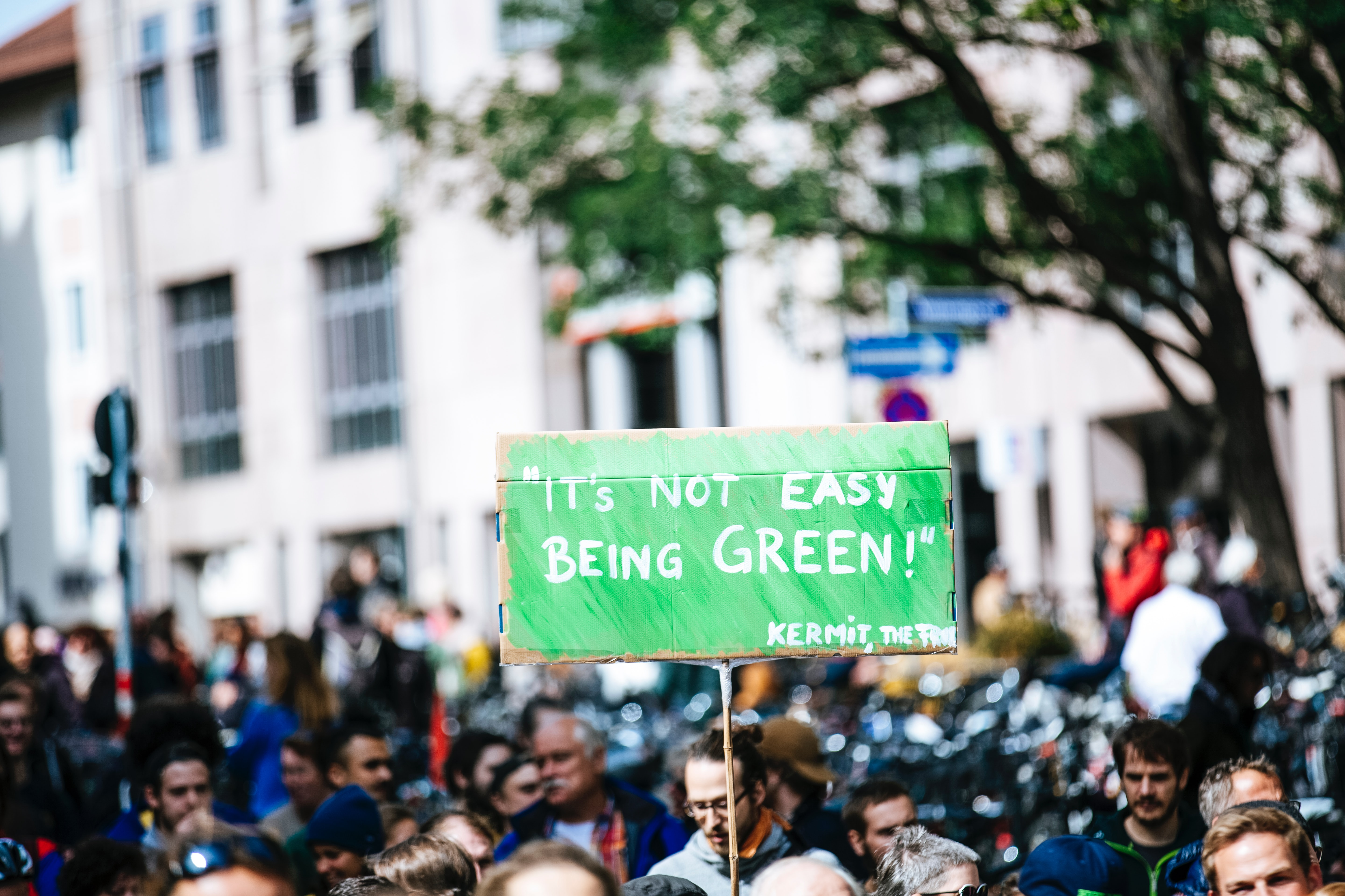 Climate change activists gather for a protest. A sign in white lettering on a green background reads 'it's not easy being green'