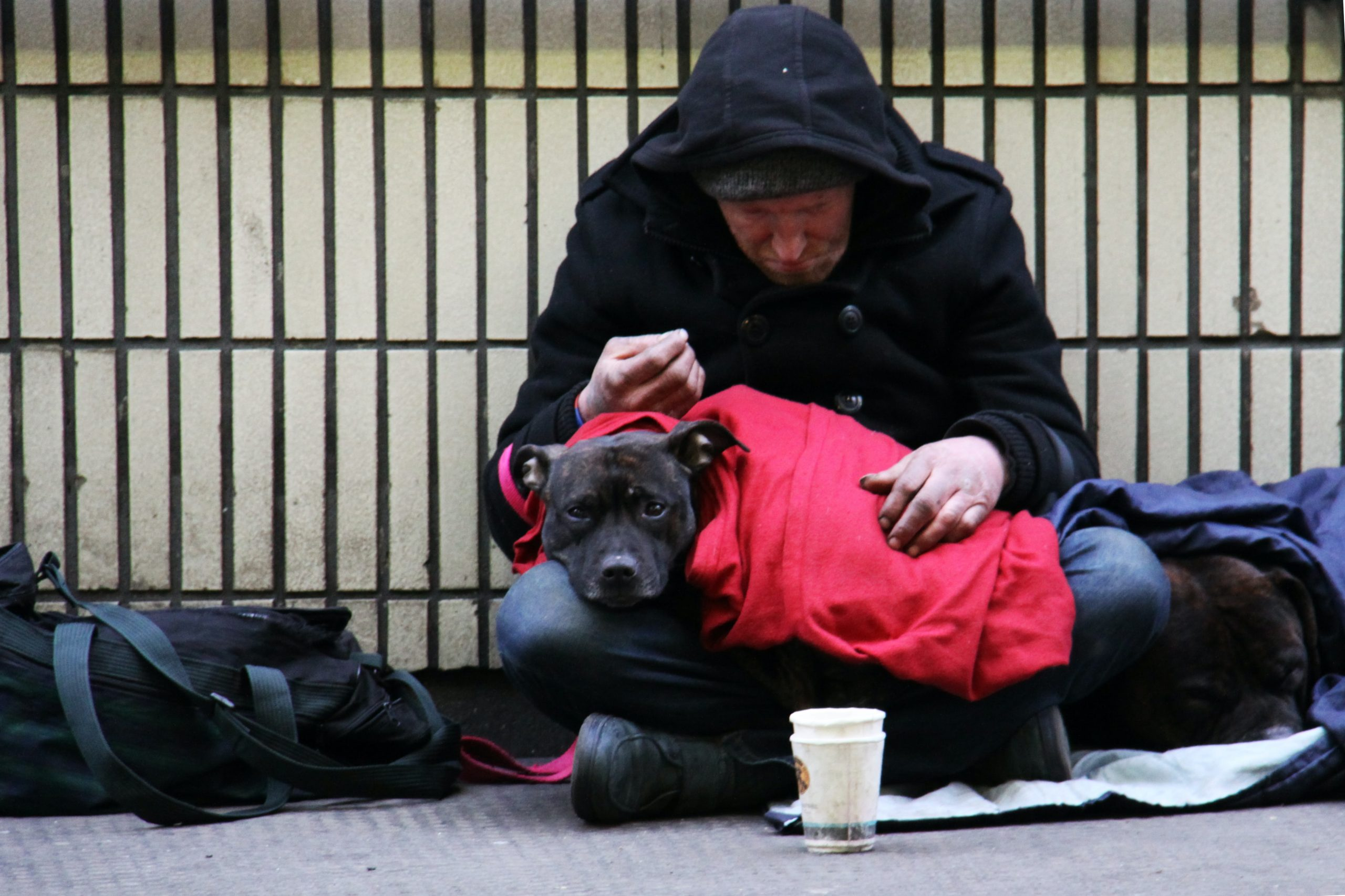 A homneless man sits on the street with his black dog.