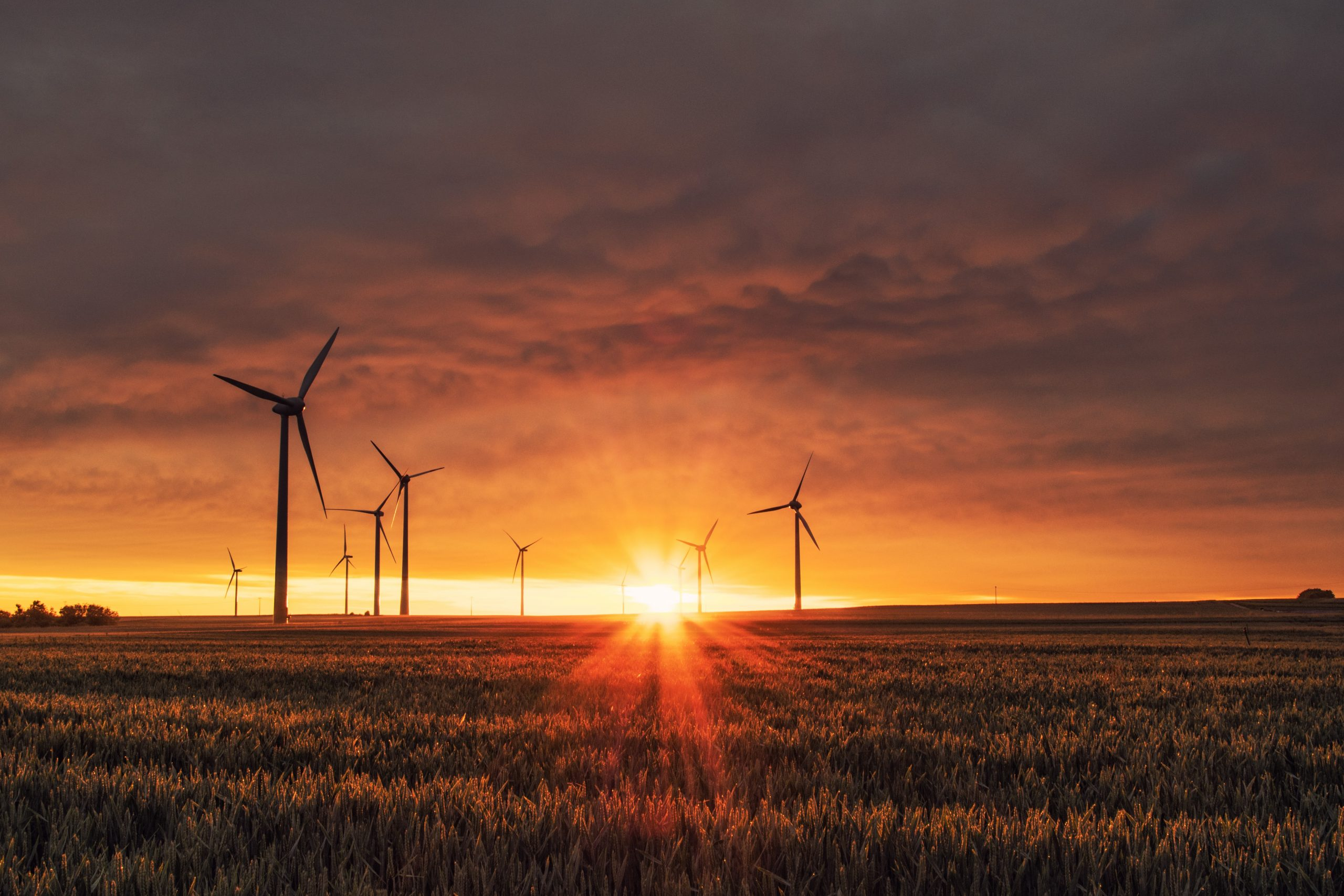 A photo shoes wind turbines silhouetted against a bright orange sunset atop a hill.