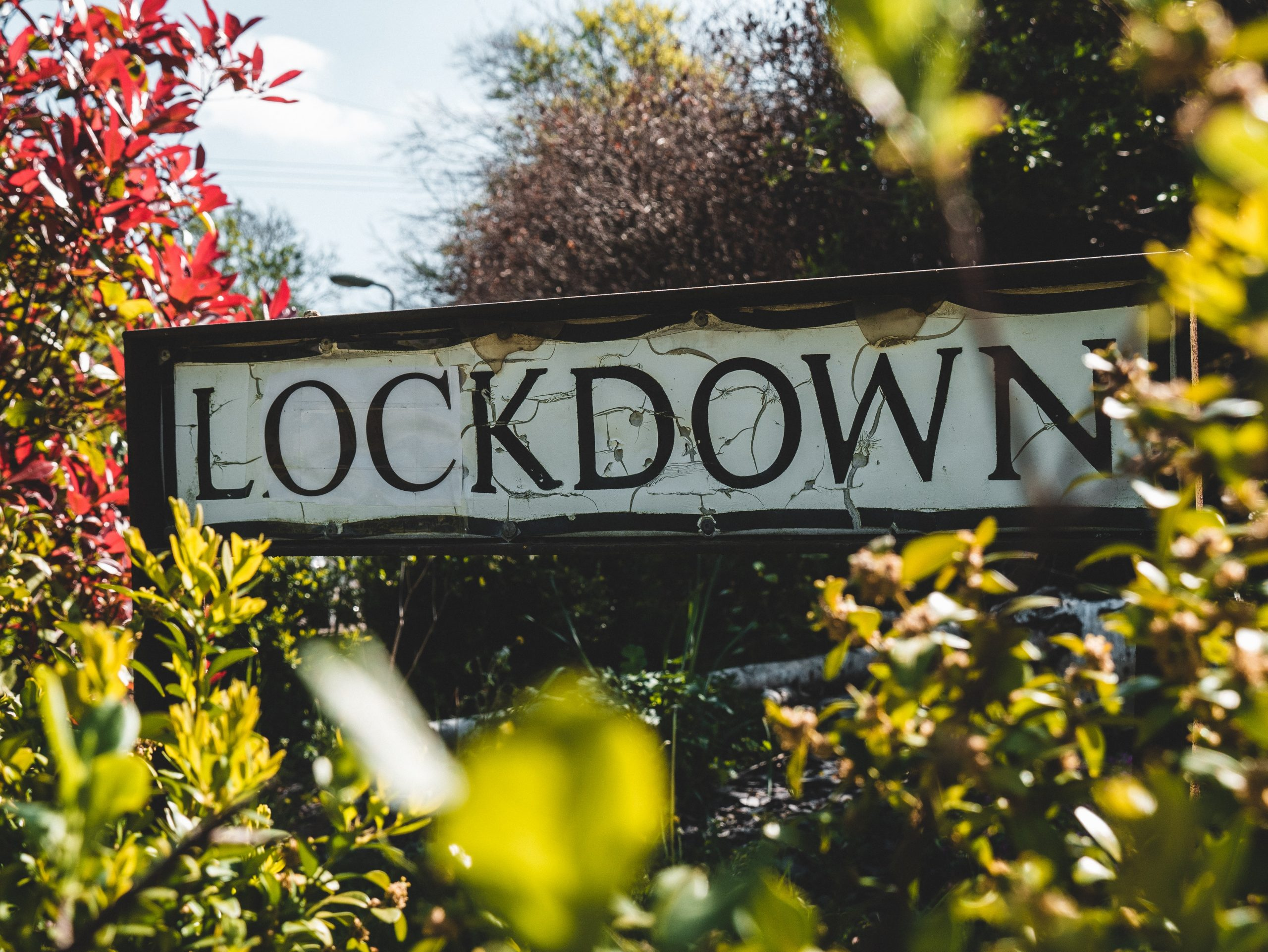 """A classic British street sign reads """"lockdown"""" in black lettering. It is nestled between some greenery."""